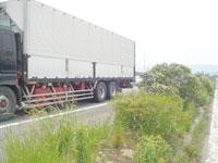 truck4_1219.jpg
