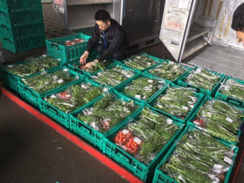 農業総合研究所と日本航空 空港集荷場開設で業務委託契約締結
